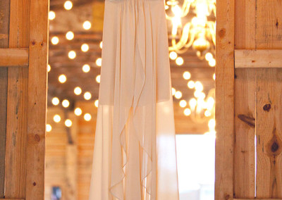 Thompson Farms wedding dress