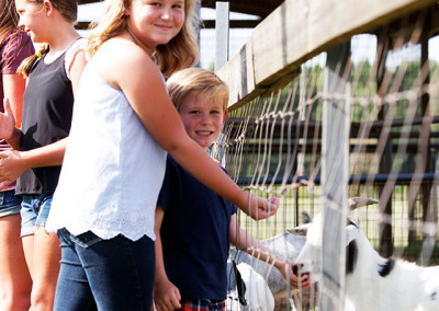 Students feed goats