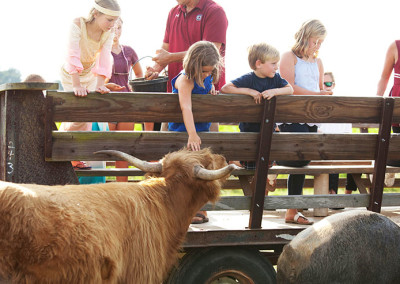 Students pet the farm animals