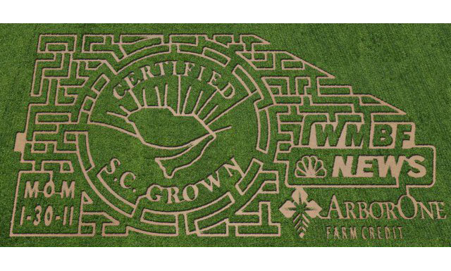 2011 10-Acre Corn Maze