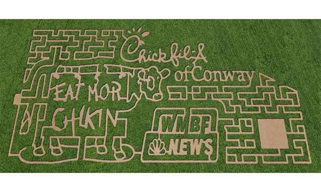 2012 10-Acre Corn Maze