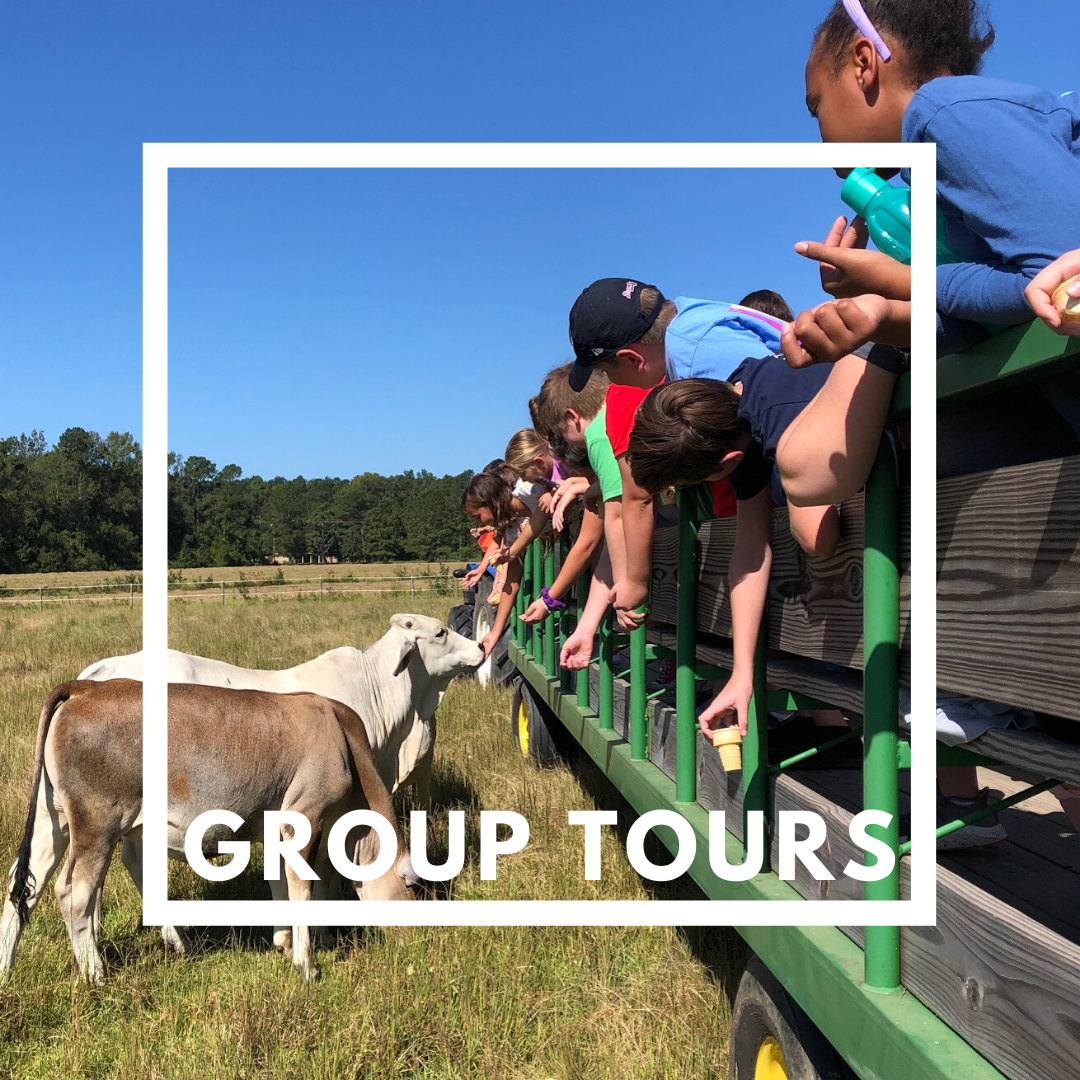 Click here to view farm group tours.
